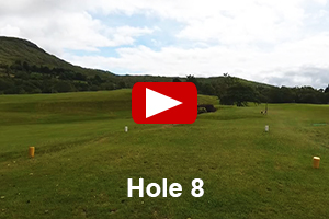 Glengarriff Golf Course - Hole 8 Video